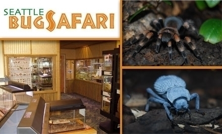 Seattle bug safari - Chihuly garden and glass groupon ...