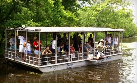 Cajun Pride Swamp Tours Reviews