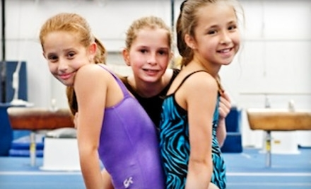 Learn basic tumbling on trampoline, bars & beam; Boys & girls classes ...