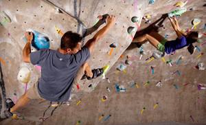 Image_climbmax-gym_2_grid_4