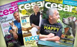 Cesar's Way Magazine