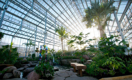 Half Price Admission To The Nicholas Conservatory Gardens In Rockford From Groupon The Shopper