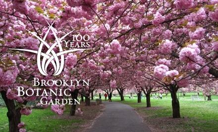 Brooklyn Botanic Garden: 1-Year Family Membership - Brooklyn Botanic Garden in Brooklyn