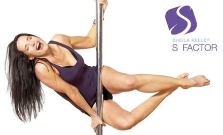 Sheila Kelleys S Factor: Super Pole 1 and Super Pole 2 Class - Sheila Kelley S Factor in Chicago