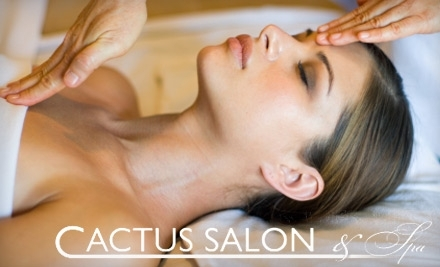 Cactus Salon & Day Spa: 55-Minute Full Body Swedish Relaxation Massage - Cactus Salon & Day Spa in Commack