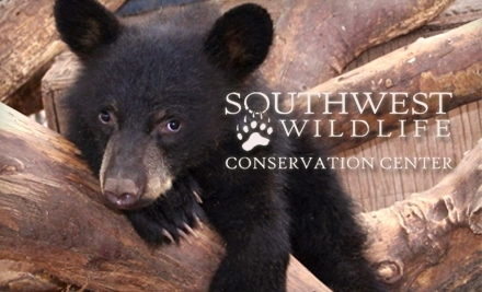 Southwest Wildlife Conservation Center - Southwest Wildlife Conservation Center in Scottsdale