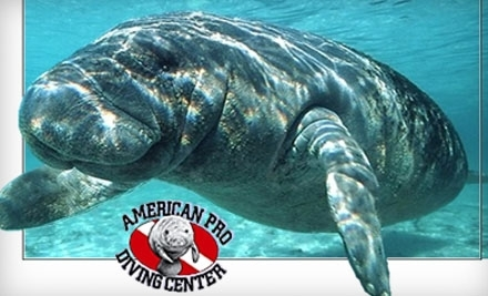 American Pro Diving Center - American Pro Diving Center in Crystal River