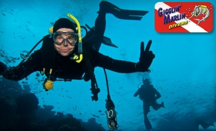Gigglin Marlin Divers - Gigglin' Marlin Divers in Houston