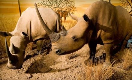 International Wildlife Museum: Family Membership - International Wildlife Museum in Tucson