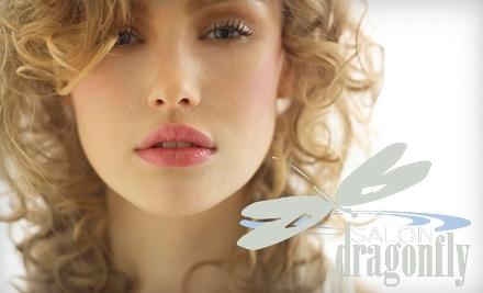 $100 Groupon to Salon Dragonfly - Salon Dragonfly in Asheville