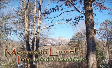 Mountain Laurel Inn - Mountain Laurel Inn in