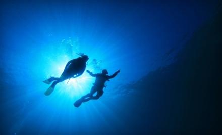 East Coast Divers - East Coast Divers in Brookline