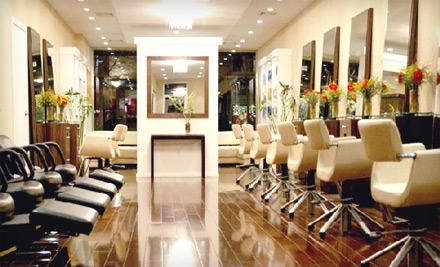 Lush New York Salon: Kerastase Conditioning Treatment and Blowout Styling - Lush New York Salon in Brooklyn