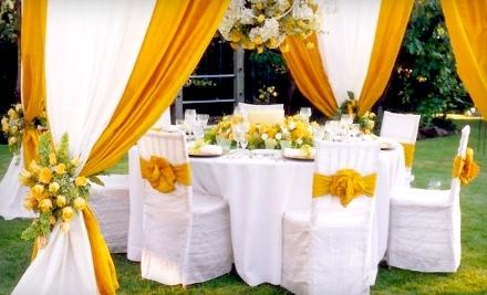 $100 Groupon to Exquisite Party Rentals - Exquisite Party Rentals in