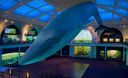 American Museum of Natural History: 1-Year Dual Membership for 2 Adults, Plus 2 Adult Tickets to