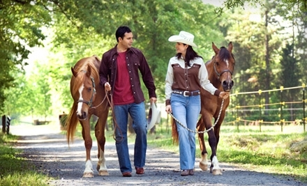 Pine River Stables - Pine River Stables in St. Clair