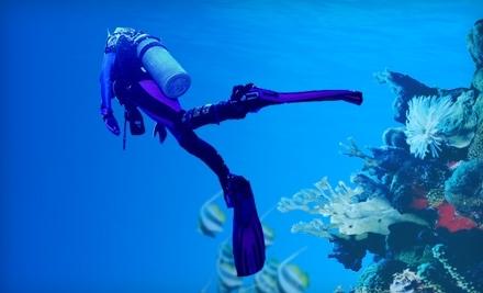 Underwater Playground - Underwater Playground in Edgewood