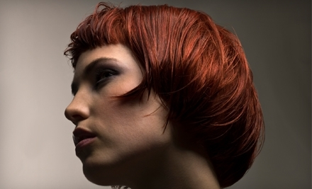 $80 Groupon to Salon Couture - Salon Couture in Elgin