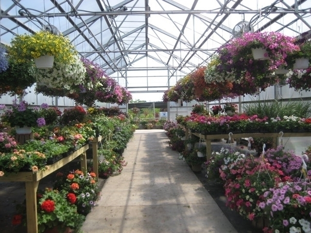 Froehlich S Farm And Garden Center Furlong Pa Groupon
