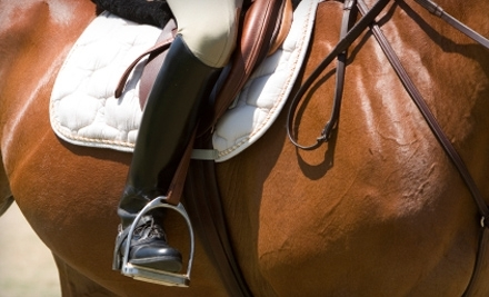 Horse Savvy Training: 2 Group Lessons - Horse Savvy Training in Poway