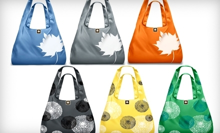 $20 Groupon to Bag the Habit - Bag the Habit in