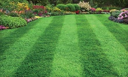 Grassmaster Plus - Grassmaster Plus in