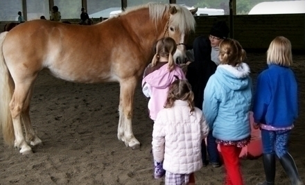 Gold Creek Equestrian Center Woodinville Wa Groupon