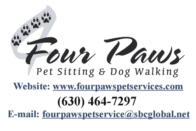 Magic scissors dog grooming park ridge il groupon for 4 paws dog salon