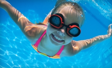 Emler Swim School Plano Tx Groupon