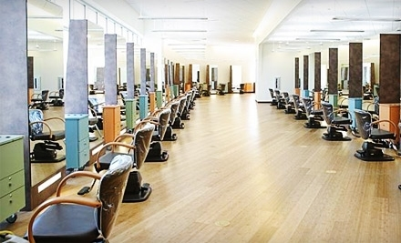 Aniu salon spa and yoga middleton wi groupon for 2 blowout salon highland park