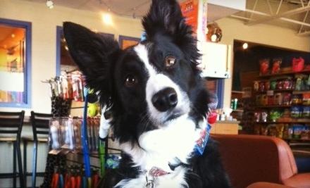 Community Bark Dog Wash Amp Coffee Bar Bayside Wi Groupon