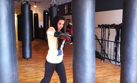 Smash Hit Kickboxing Club - Smash Hit Kickboxing Club in Pontiac