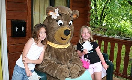Yogi Bear's Jellystone Park Camp-Resort - Yogi Bear's Jellystone Park Camp-Resort in Williamsport