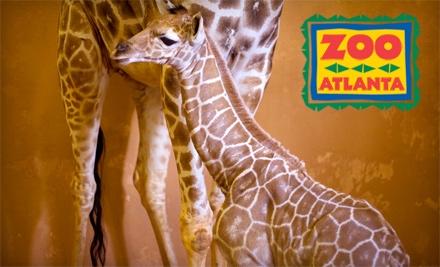 Zoo Atlanta - Zoo Atlanta in Atlanta