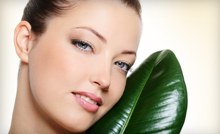 Beauty Regime: Choice of One Level 1 Facial Lift Treatment - Beauty Regime in Troy