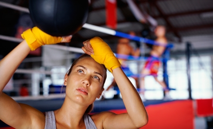 1 Private Boxing Lesson (an $85 Value) - VFitness in New York