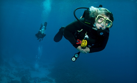 Try Scuba Scuba-Diving Experience (a $40 value) - Midwest Aquatics in Overland Park