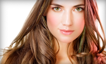 3 Feather Hair Extensions (a $50 value) - Colours Salon & Day Spa in Timonium