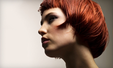 Haircut, Style, and Permanent Hair Coloring (a $99 value) - Salon Expose  in Prairie Village