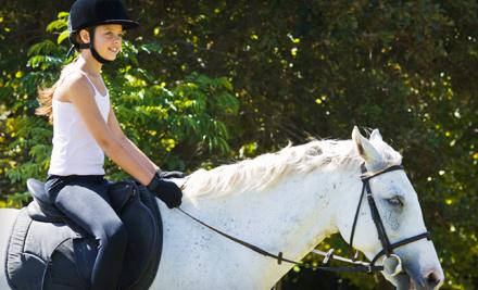 Glen Grove Equestrian Center Morton Grove Il Groupon