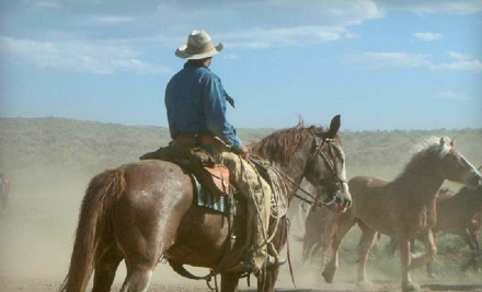 1-Hour Guided Trail Ride for 2 (a $70 value) - Sombrero Ranches in Estes Park