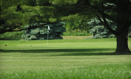 18-Hole Green Fee for 2 (up to a $56 value) and 1 Cart Rental for 2 (up to an $24 value) - Sycamore Golf Club in Sycamore