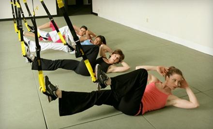 6 TRX Suspension-Training Classes (a $60 value) - Intermix Fit Club in Wixom