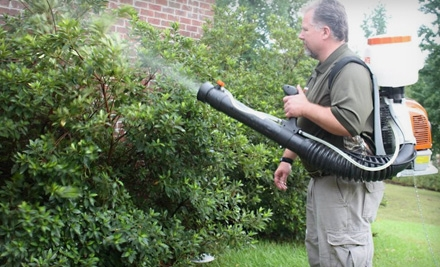 Initial Pest-Control Service for a Home of Less than 3,000 Square Feet (a $125 value) - Advantage Pest Services in