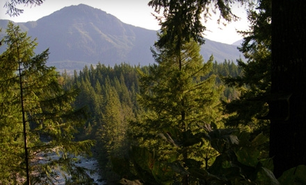 1-Night Stay for 2 in the Tall Firs Room on a Weeknight (Sun. to Thurs.) (a $119 value) - Roaring River Bed & Breakfast in North Bend
