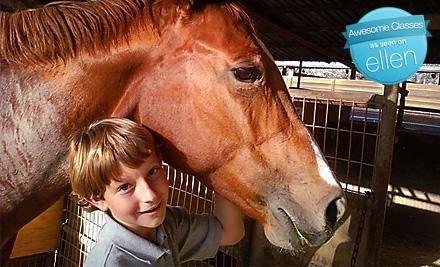 Equestricise - Equestricise in San Juan Capistrano