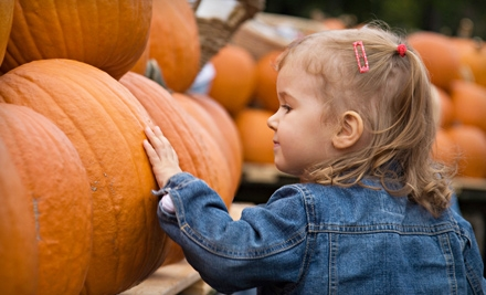 Fall-Activity Outing for 2 (a $45 value) - Crooked Pines Farm in Eatonton