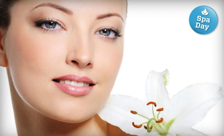 Non-Surgical Facelift (a $199 value) - Organelle Salon and Spa in Las Vegas