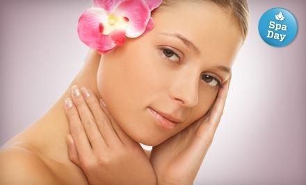 Amazing Face Spa European Skin Care Studio - Amazing Face Spa European Skin Care Studio in Sunnyvale