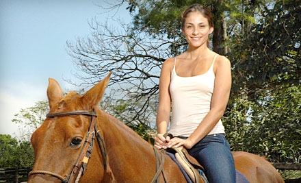 3 Small-Group Horseback-Riding Lessons (a $120 value) - Top Ridge Farms in Vista